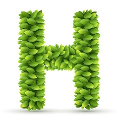 Letter H alphabet of green leaves vector image