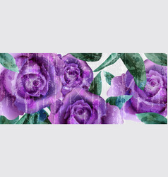 purple roses watercolor background vintage vector image