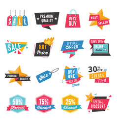 set badges labels banners and coupons vector image