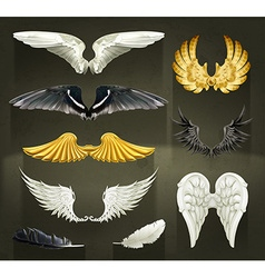 Wings set on black background vector image