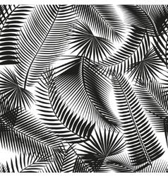 Beautiful black seamless tropical jungle floral vector image