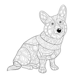 Adult coloring bookpage a cute dog with ornaments vector