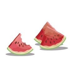cartoon bite a piece watermelon slice of vector image