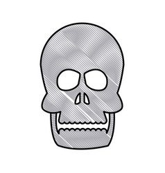 drawing human skull bone care healthy vector image