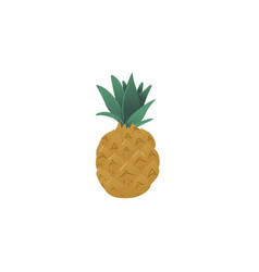 fresh and juicy pineapple or ananas icon healthy vector image