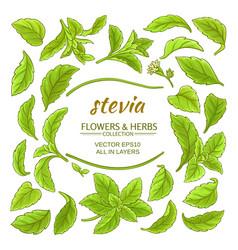 Stevia elements set vector