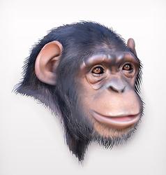Chimpanzee head realistic vector image vector image