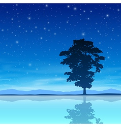 Tree with Night Sky vector image vector image