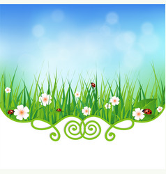 fresh natural background with grass vector image