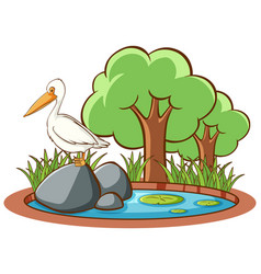 isolated picture stork in park vector image
