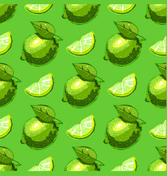 Lime fruit seamless pattern citrus fruits repeat vector