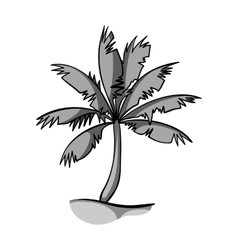 Palm tree icon in monochrome style isolated on vector image