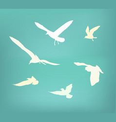 Seagull flying silhouette vector