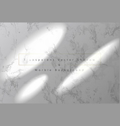 Sunbeams and transparent shadow on marble vector