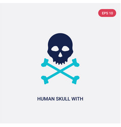 two color human skull with crossed bones icon vector image