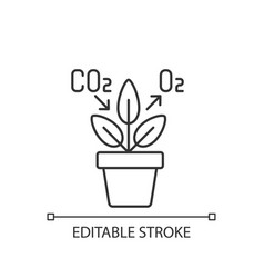 Air purifying plant linear icon vector