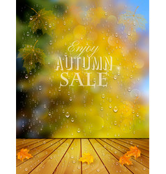 autumn sale background with a colorful leaves and vector image