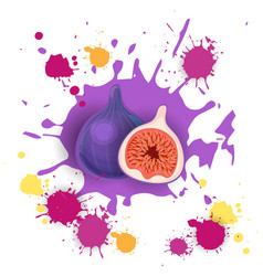 Fig fruit logo watercolor splash design fresh vector