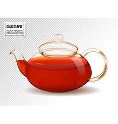 Glass teapot with tea isolated on vector