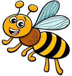 Honey bee insect character cartoon vector