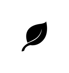 leaf flat icon vector image