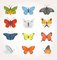 printset of colorful butterfly design vector image vector image
