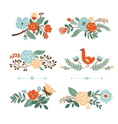 set botanical graphic elements vector image