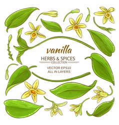 Vanilla elements set vector