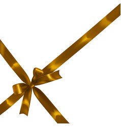 golden realistic bow vector image vector image