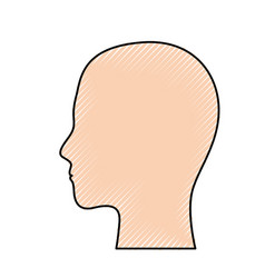 human head in colored crayon silhouette vector image