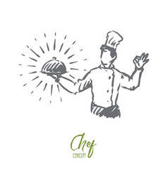 chef pot meal restaurant concept hand drawn vector image