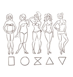 Sketch set of isolated female body shape types vector image