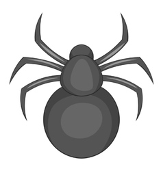 Spider icon cartoon style vector image