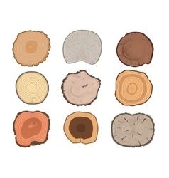 Tree slices set vector image