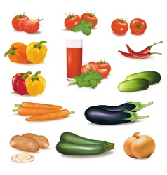 big group of vegetables vector image vector image