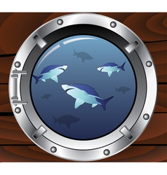 porthole and sharks vector image