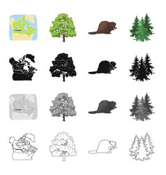 canada tree plant and other web icon in cartoon vector image vector image