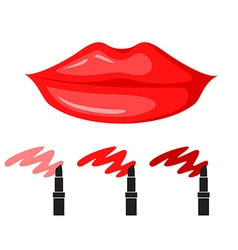 lips makeup vector image
