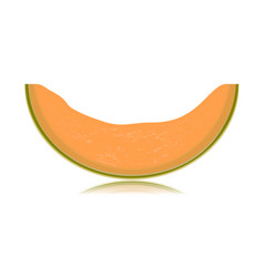 sliced melon isolated on white background vector image