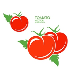 Tomato Red vegetables with leaves vector image