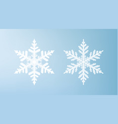 white snowflakes isolated on light blue background vector image