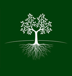 White tree with roots on green background vector