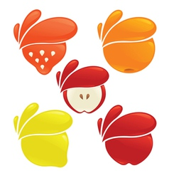 fresh fruits and berries vector image