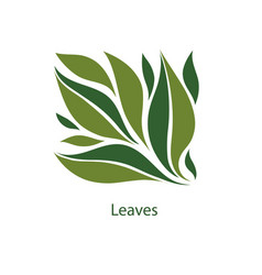green leaves of trees and plants elements for eco vector image
