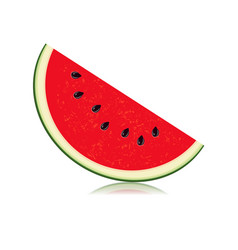 sliced of watermelon isolated on white background vector image vector image