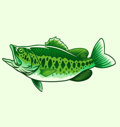 big bass green fish vector image