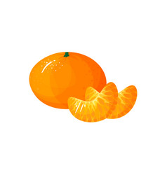 cartoon fresh tangerine or mandarin orange fruit vector image