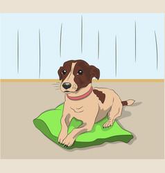 Dog lies on pillow vector