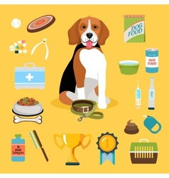 Dog life icons vector