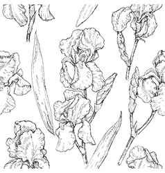 doodle iris seamless vector image vector image